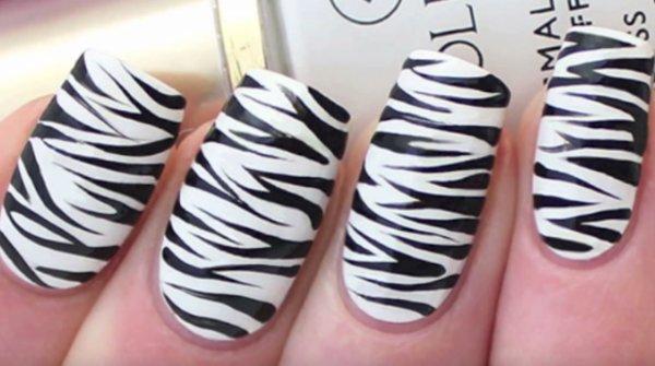 cebra decoracion uñas blanco negro